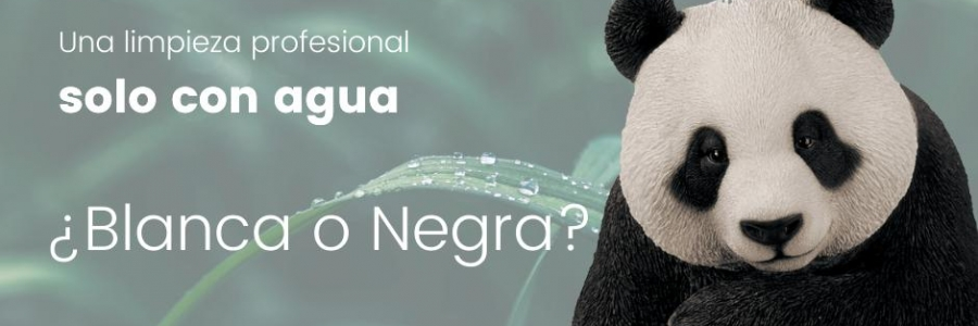 Bayeco Profesional- BASIC BLANCA O NEGRA